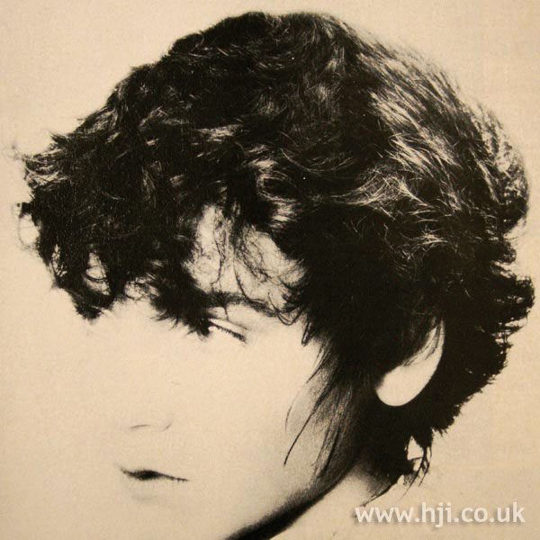 1970s layered shag cut