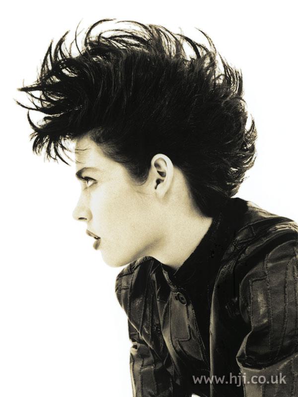 1994 dark quiff hairstyle
