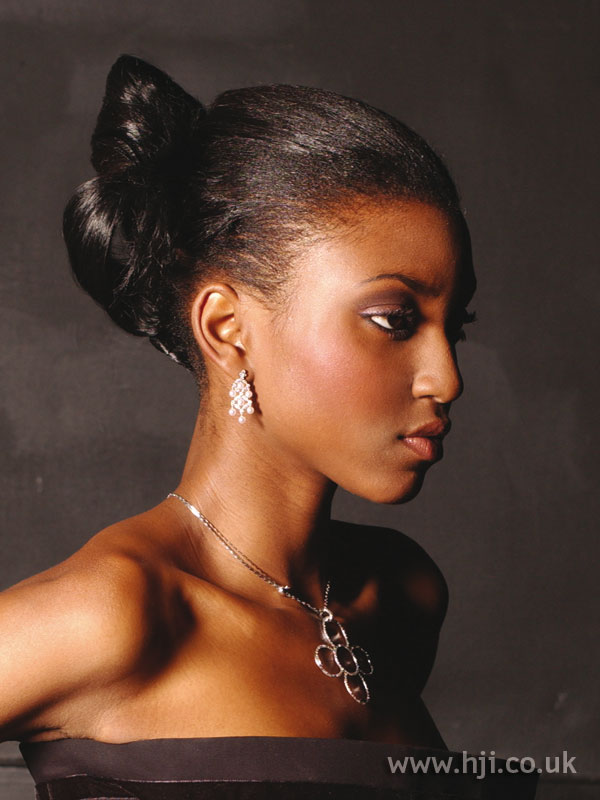 2005 afro updo