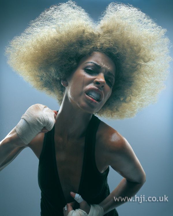 2006 afro avant garde hairstyle
