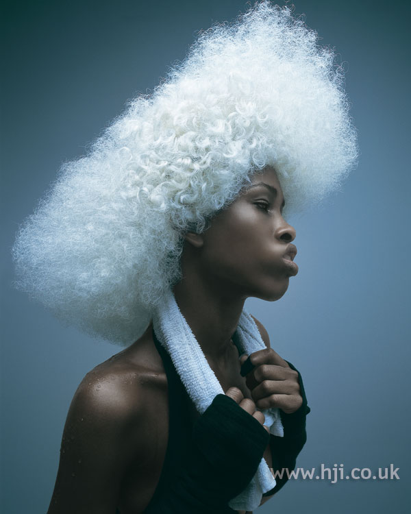 2006 afro avant-garde hairstyle