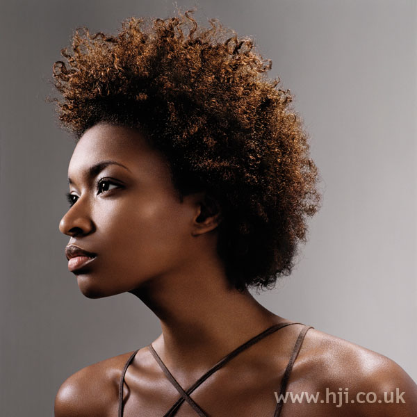 2006 afro curls hairstyle