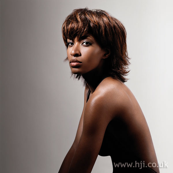 2006 afro smooth hairstyle