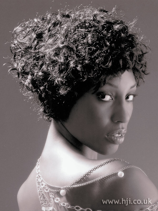 2007 afro updo