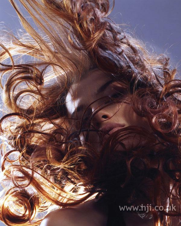 2007 brunette movement1
