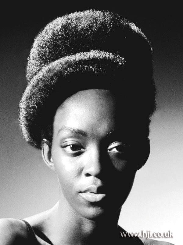 2008 afro updo
