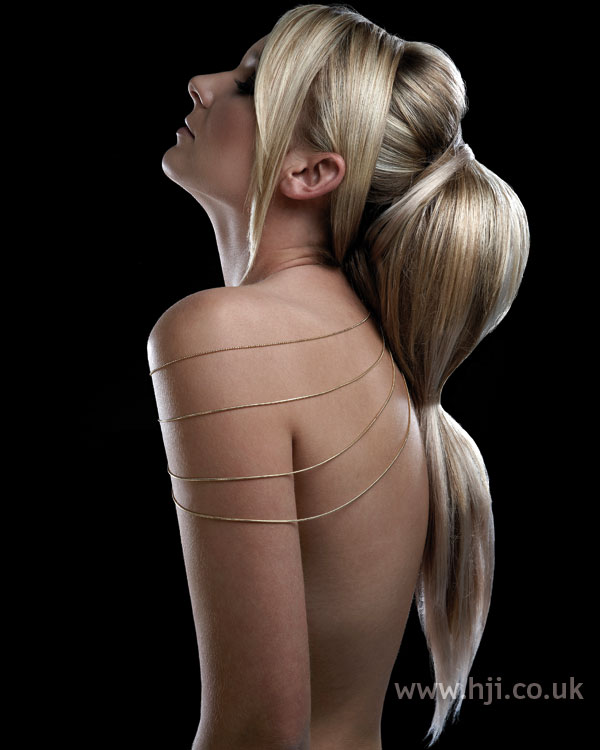 2008 ponytail volume1