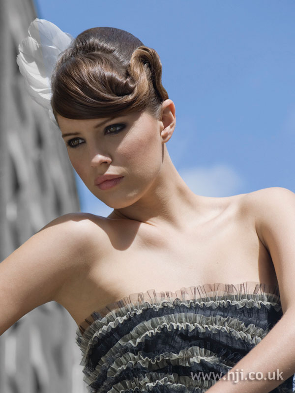 2009 brunette updo hairstyle