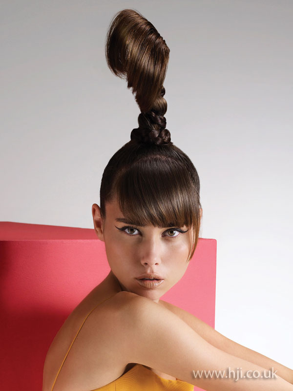 2009 ponytail updo hairstyle