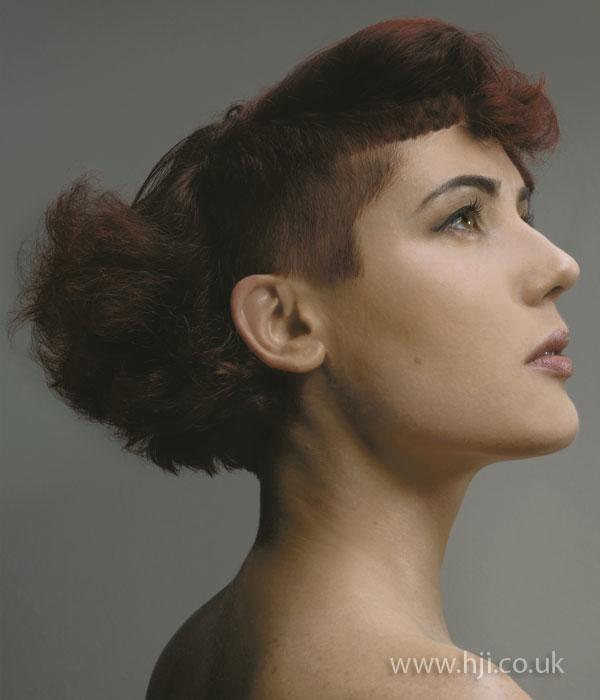 2009 shaved sides