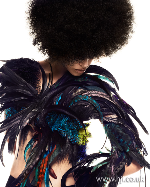 2012 rounded shape womens afro hairstyle