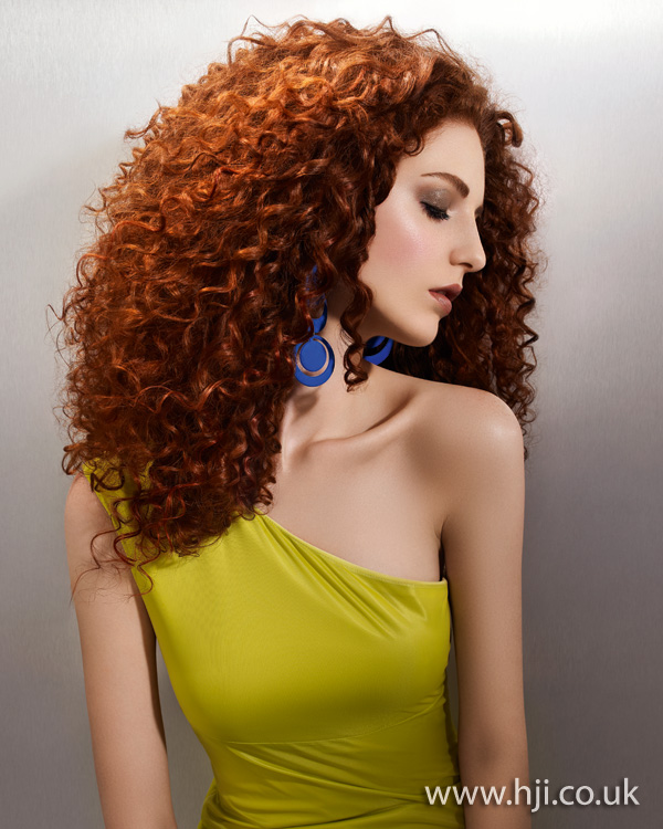 2012 tight curls womens hairstyle