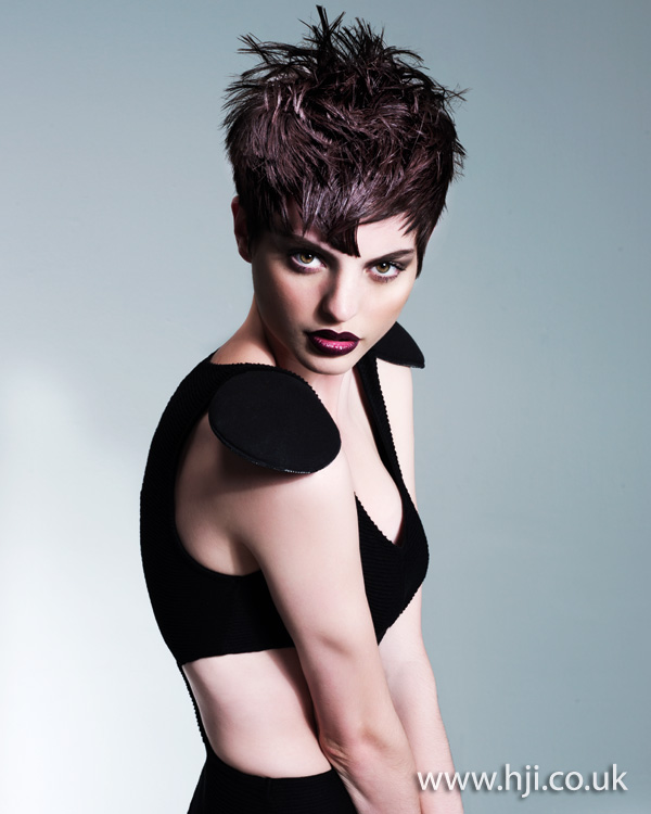 2012 womens brunette textured short hairstyle