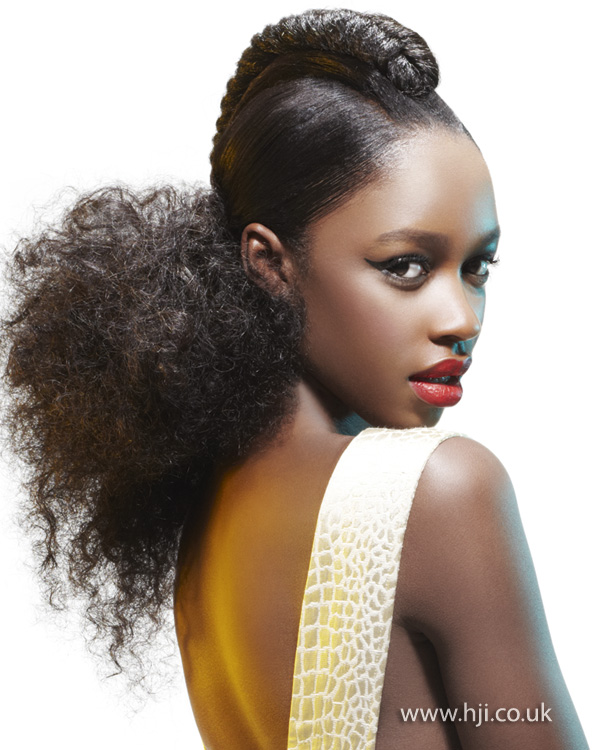 2013 afro updo hair