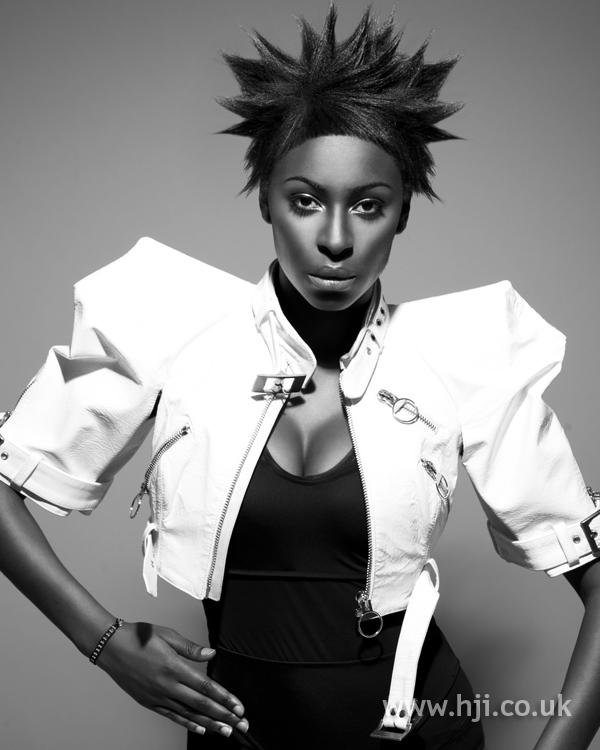 Sandra webb bha Afro1 hairstyle