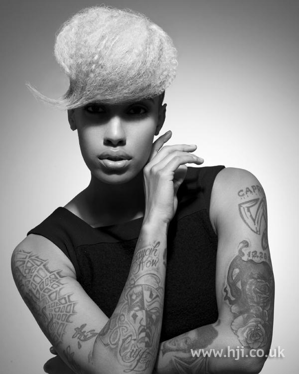 Sandra webb bha Afro3 hairstyle