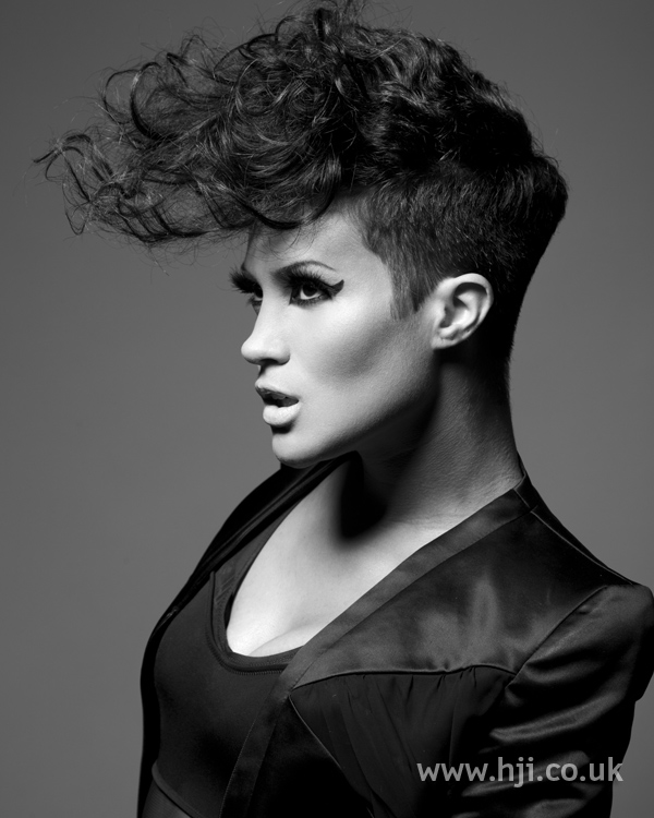 Sandra webb bha Afro8 hairstyle