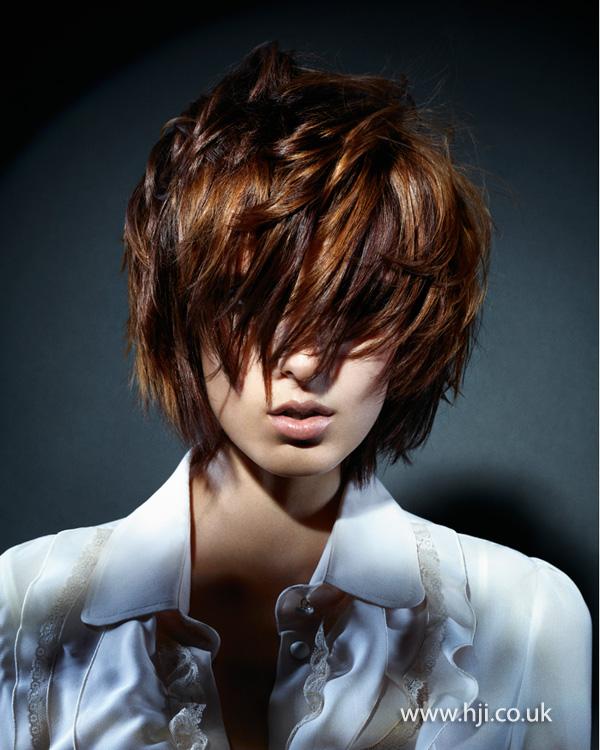 2013 multi tonal brunette layered bob