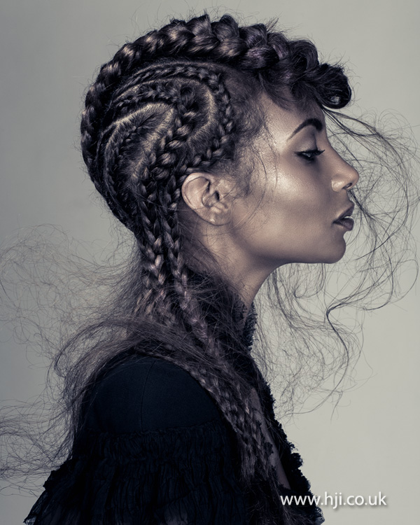 2015 multi plaited afro long