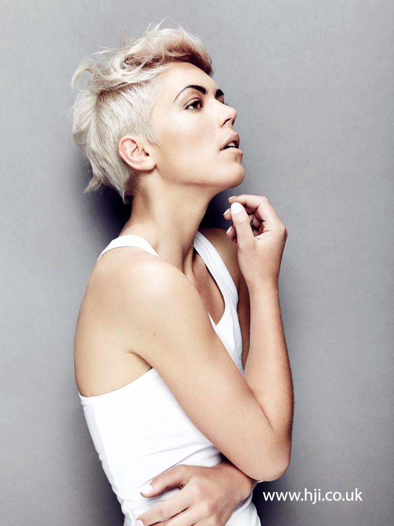 2015 Platinum Pixie Crop with Sleek Sides and Textured Top