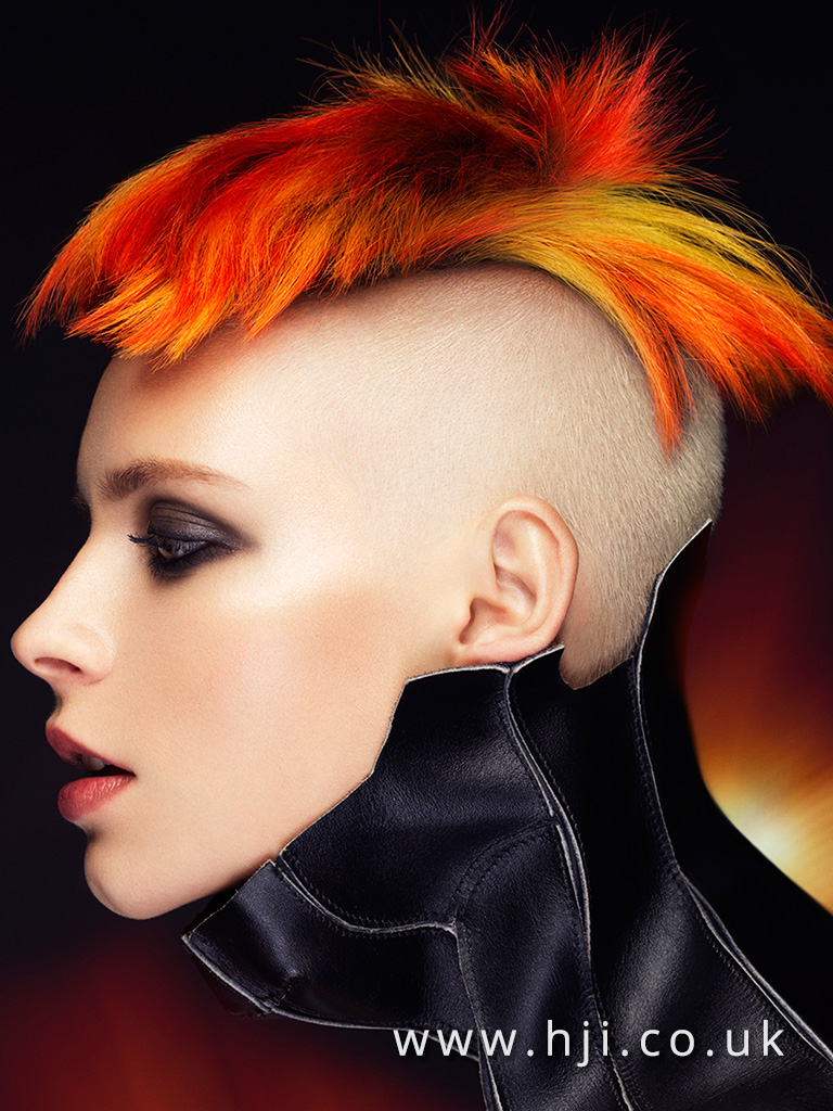 2016 Textured crop with bright red and yellow slices and complete undercut