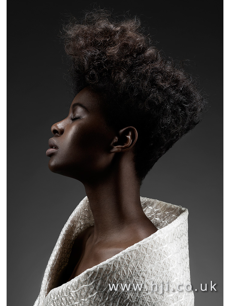2016 Editorial afro style with soft natural texture and disconnected style