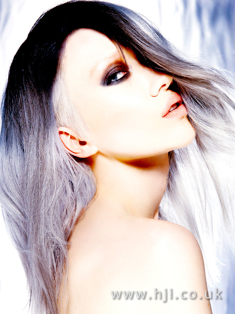 2016 Long metallic purple ombre with very drak roots and pastel purple lengths