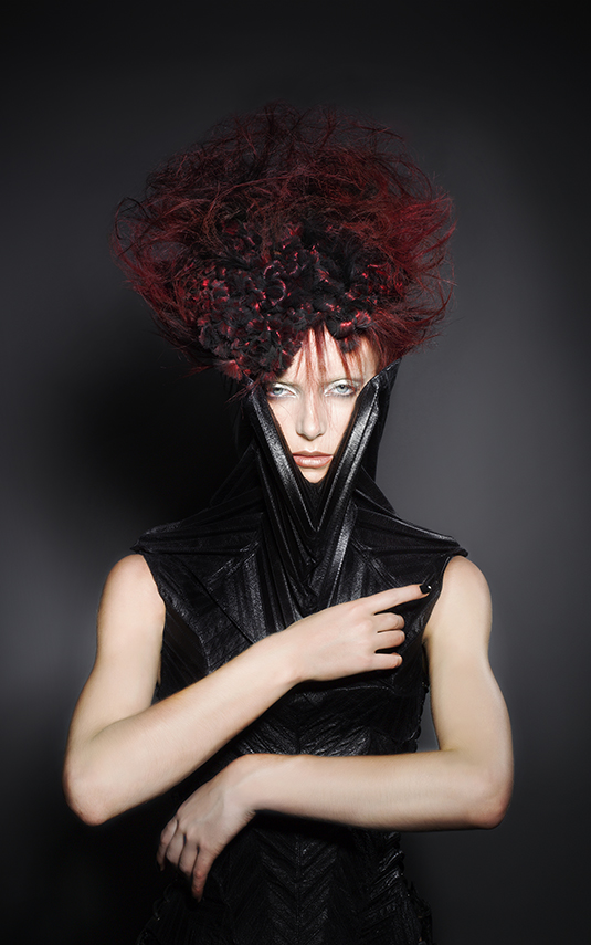 Deep Red Avant Garde Updo Hairstyle