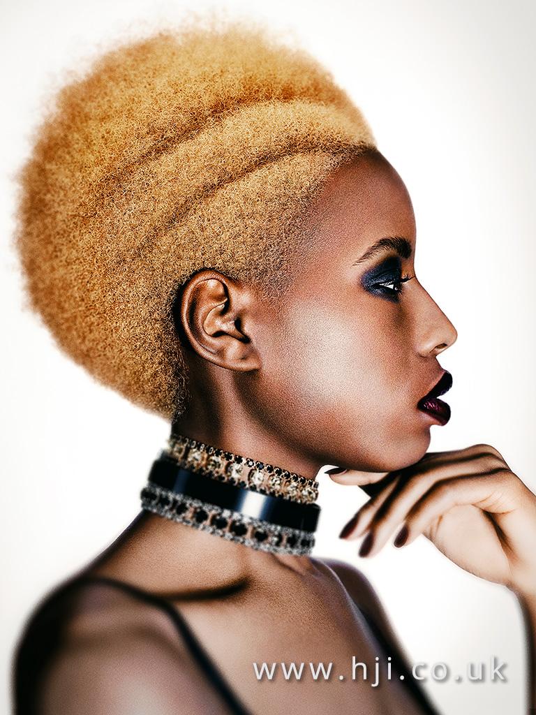 2016 BHA Hairstyle Akin Konizi 08