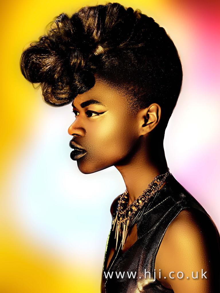 2016 Ann Veck BHA Afro Hairstyle 1
