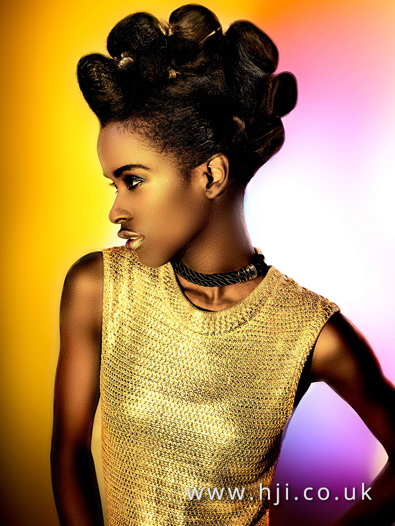 2016 Ann Veck BHA Afro Hairstyle 2