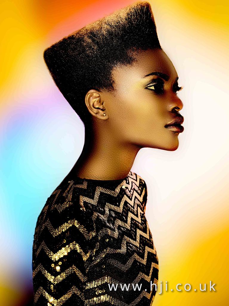 2016 Ann Veck BHA Afro Hairstyle 3