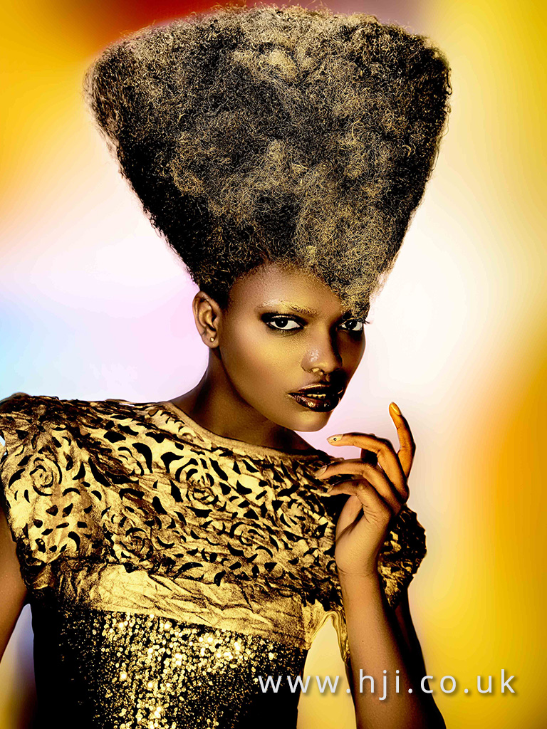 2016 Ann Veck BHA Afro Hairstyle 6