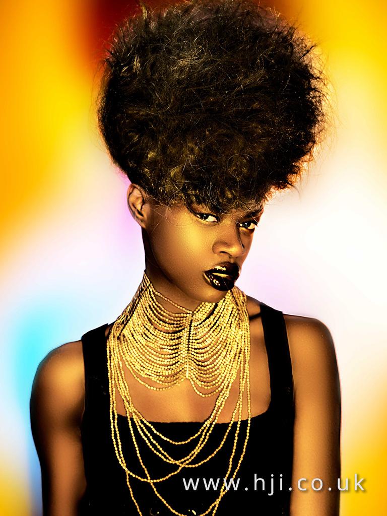 2016 Ann Veck BHA Afro Hairstyle 7