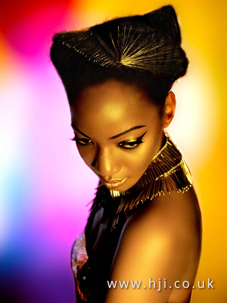 2016 Ann Veck BHA Afro Hairstyle 8