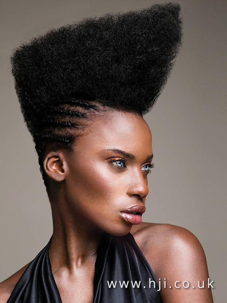 2016 BHA Afro Hairstyle Anthony Grant 8