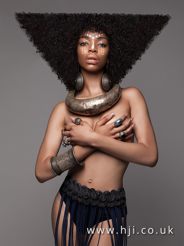 2016 BHA Afro Hairstyle Lisa Farrall 3