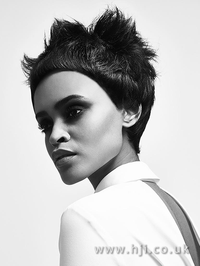 2016 BHA Afro Hairstyle Rpbert Eaton 6