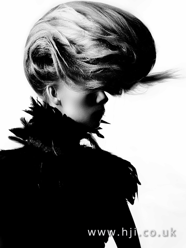2016 BHA Avant Garde Hairstyle Anne Veck 04