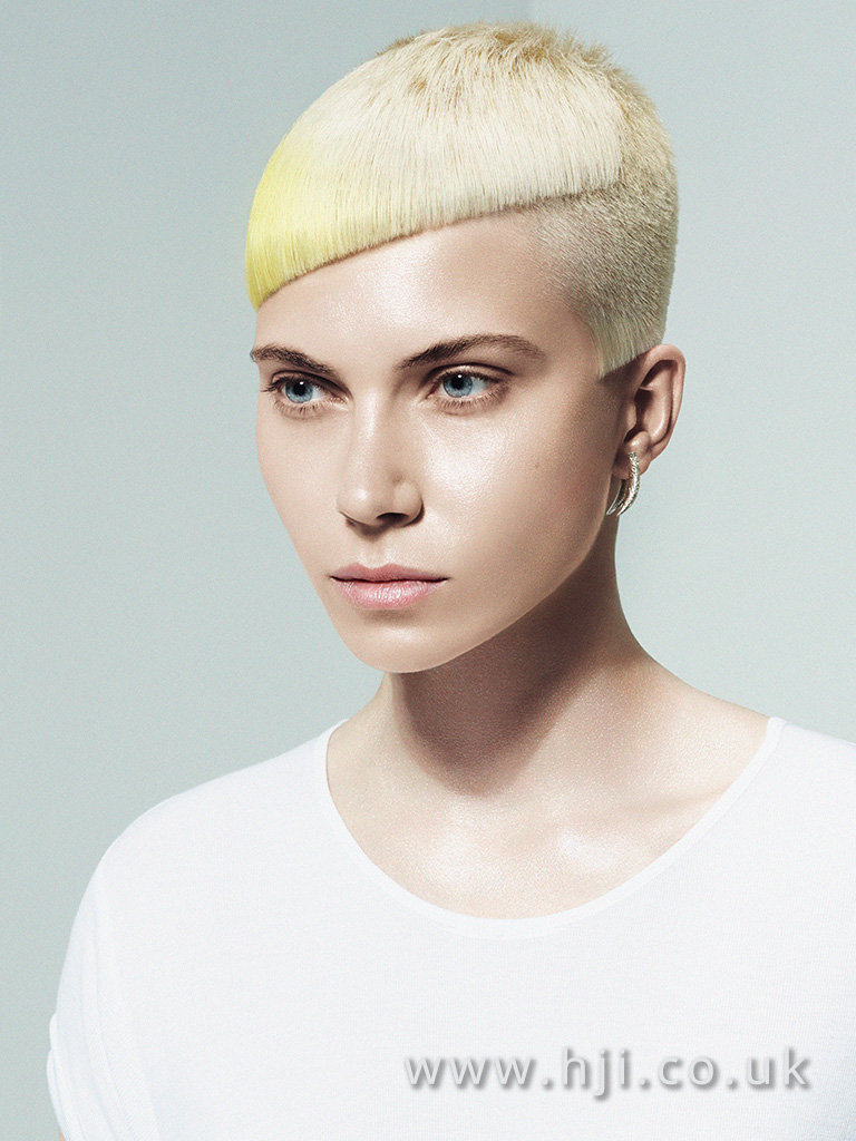 2016 BHA Colour Technician Hairstyle Sharon Peake Adam Bryant 04