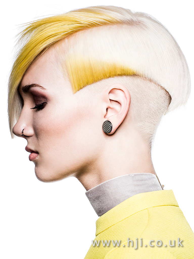 2016 BHA Colour Technician Hairstyle Siobhan Golden 07