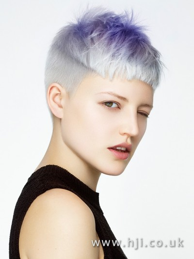 Stunning purple crop hairstyle