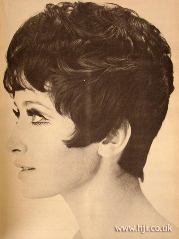 1967 Brunette Cropped Hairstyle Hji