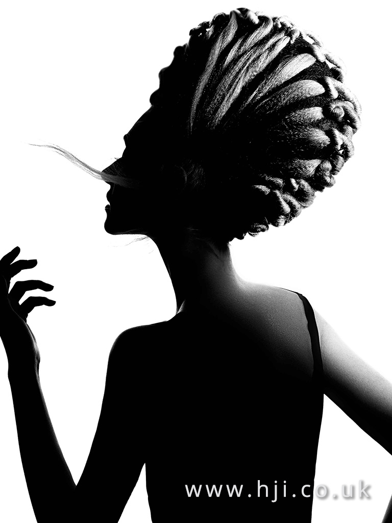 Avant Garde Hairdresser of the Year Finalist Collection