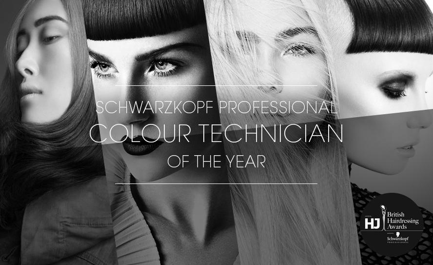 Schwarzkopf Professional Colour Technician Past Winners Image
