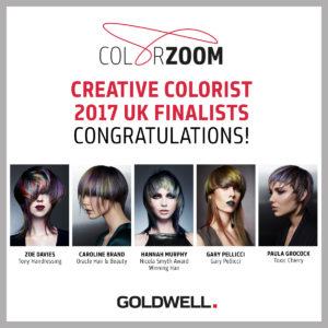 Color Zoom Creative Color Finalist