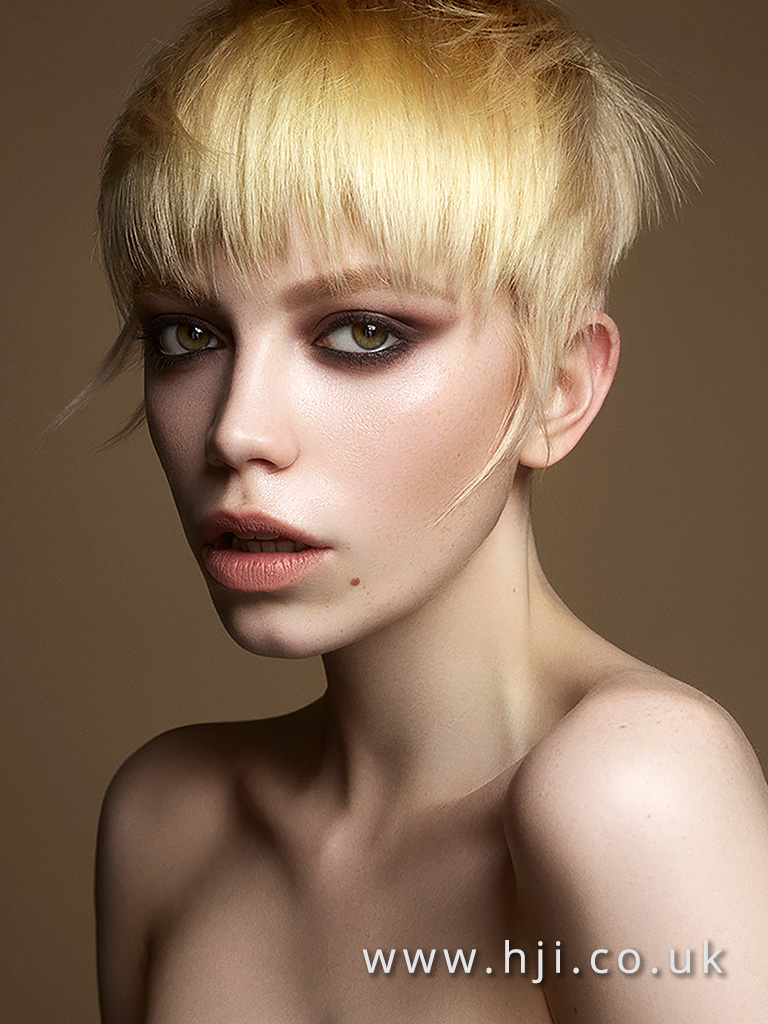 Isobel Eaton North Eastern Hairdresser of the Year 2017 Colleciton Pic 5