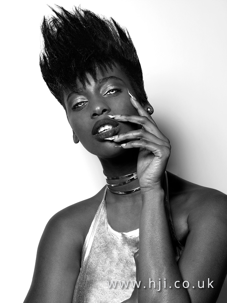 Anthony Grant Afro Hairdresser of the Year Finalist Collection
