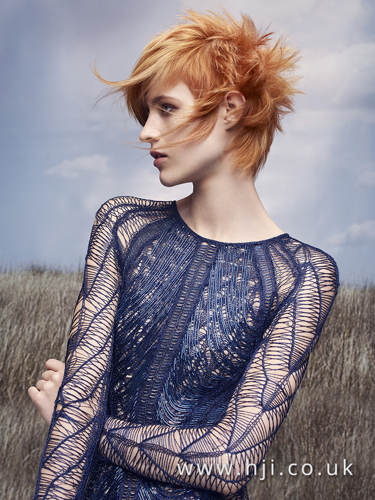 Rush Hair Artistic Team of the Year 2017 Collection pic 1