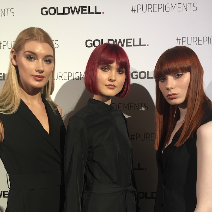 Goldwell Pure Pigments models